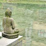 hagyományos kínai gyógyászat, HKO, kínai orvoslás